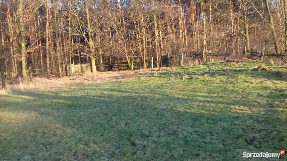 ladna dzialka polana łąka 200m Brynek