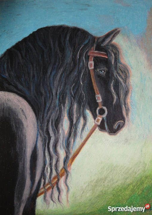 Obraz Koń Rysunek Pastele 4 Konie Sztuka Malarstwo Konin