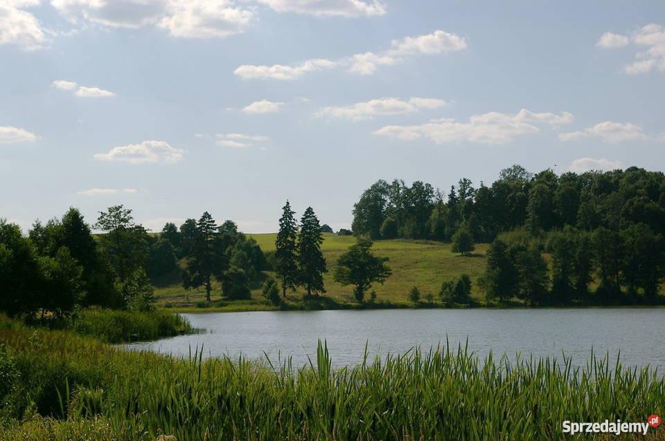 50 ha nieruchomość siedliskowa nad jeziorem. Szeskie Wzgórza
