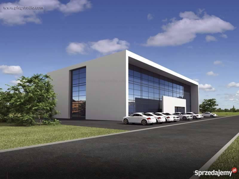 Projekt budynku biurowego usługowego PS-BR-700-30GR