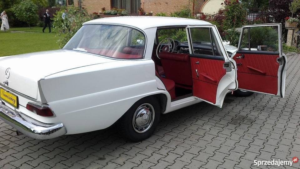 Zabytkowy Mercedes W120 z 1957 roku ślubywolne Warszawa