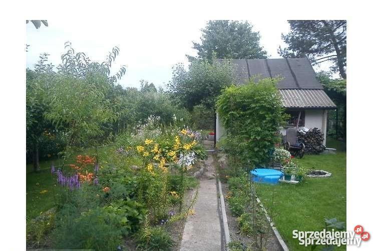 Działka ogrodowa 33zł/m2