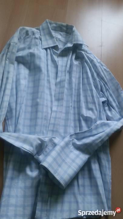 c1fe9713c 43, 176-182, L-XL, lambert, wólczanka, koszula męska z kołni Kielce ...