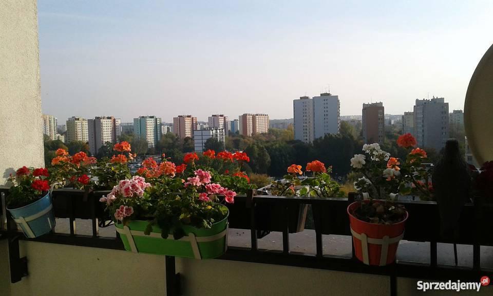 Sprzedam Mieszkanie 76m2 Bielany Warszawa Sprzedajemypl