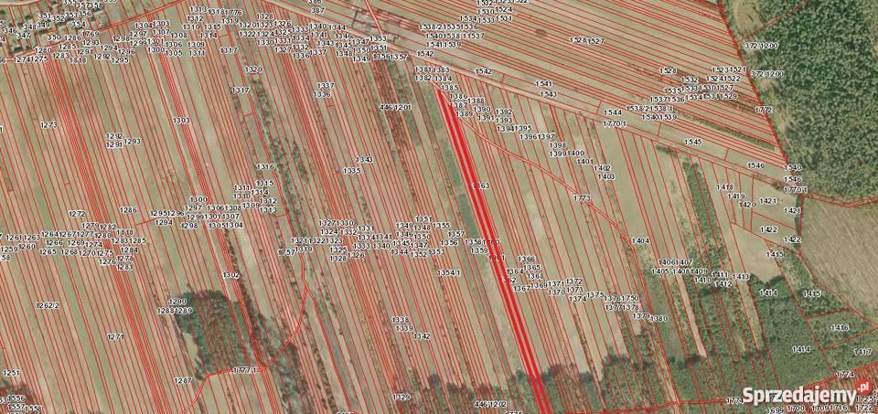 Działka rolna Wólka Pętkowska gmina Bałtów (możliwa zamiana)