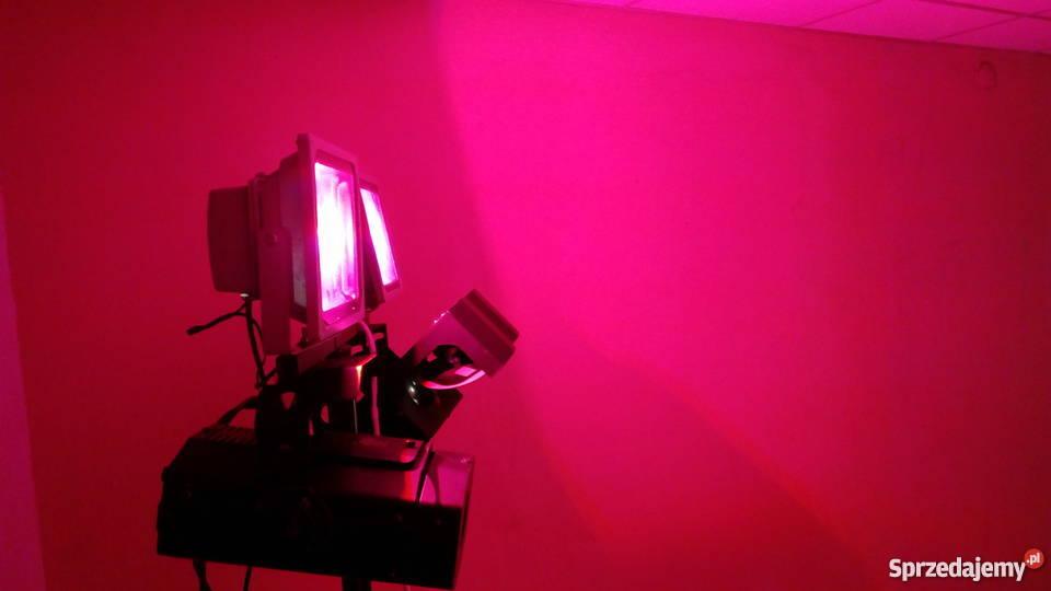 Efekty Dyskotekowe Ledoświetlenie Zestaw Na Statywpolecam