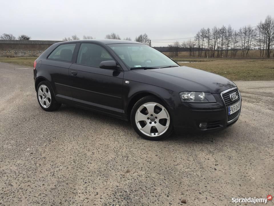 Audi A3 8p 19 Tdi Bogata Wersja Ambition Czarna Perła Koźmin