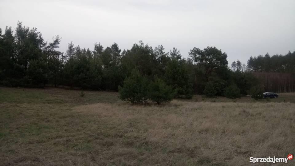 Działka Józefkowo k/ Nakła na Notecią