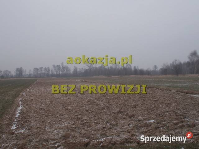ogłoszenie działka rolna 5800m2 Dębica