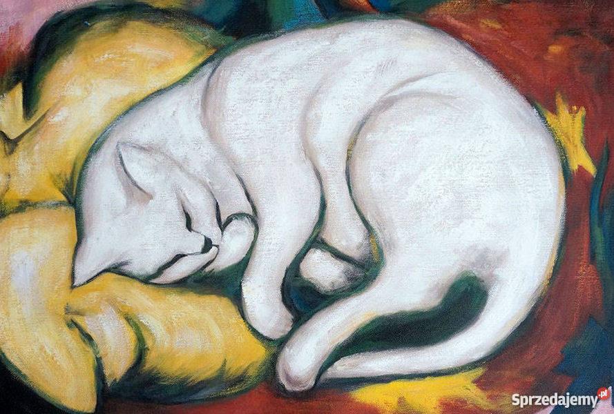 Obraz Kot Sprzedajemypl