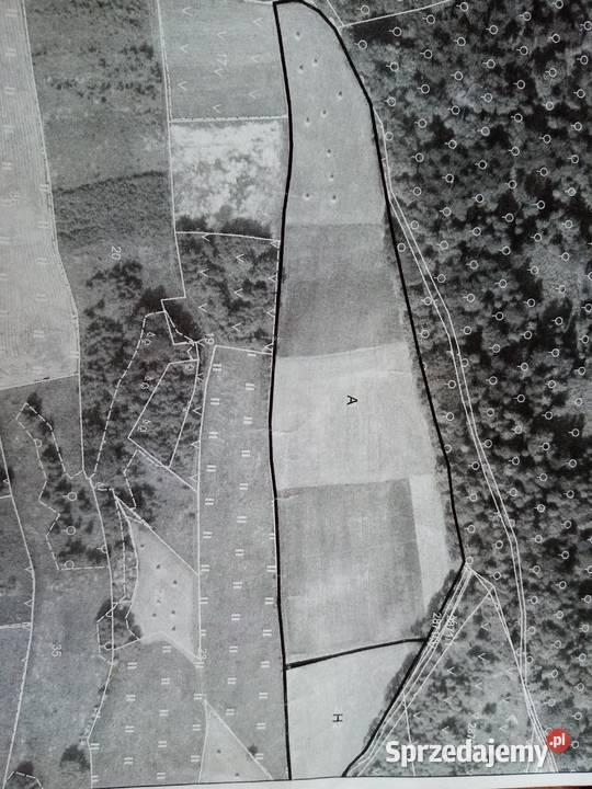 Sprzedam działkę rolną 2,5 ha
