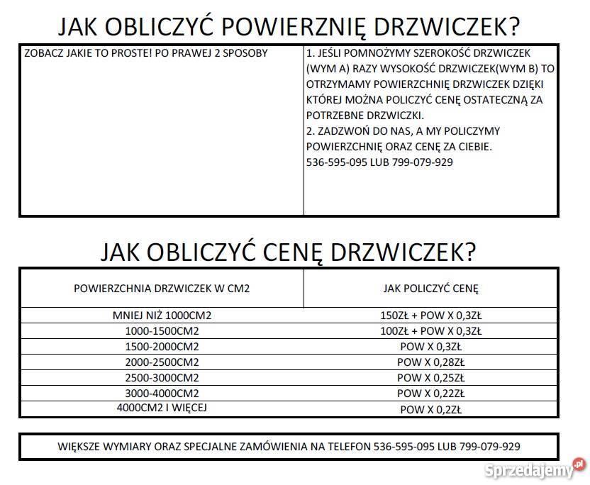 Drzwiczki drzwi do kominka kominkowe twój wymiar Pozostałe Kraków