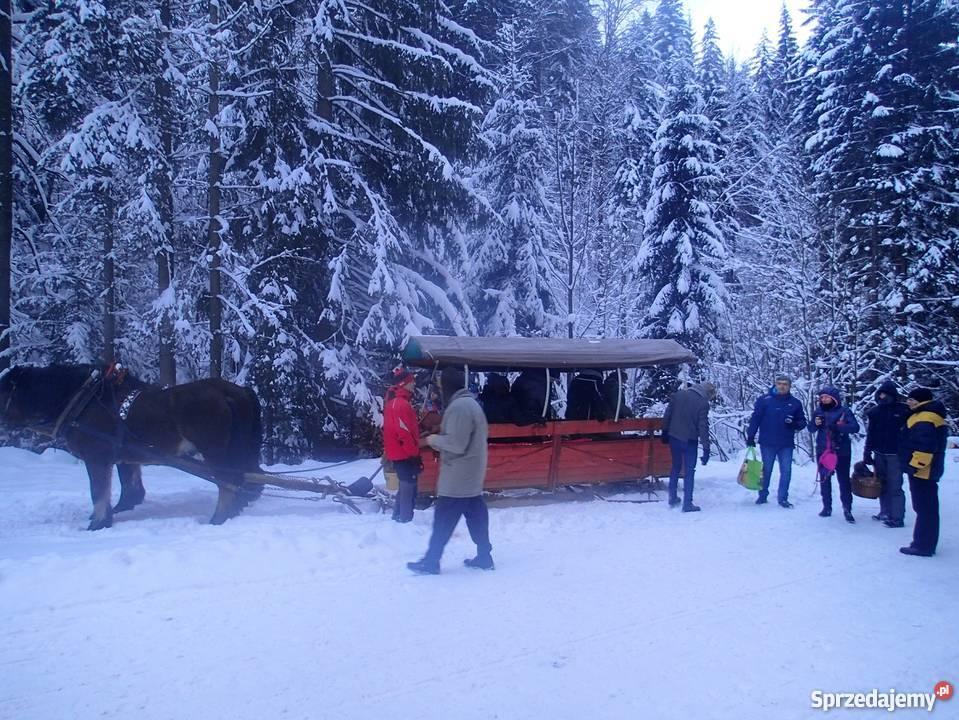 Kuligi Zimowe z Biesiadą w Kolybie Wisła 2018 Wakacje i podróże