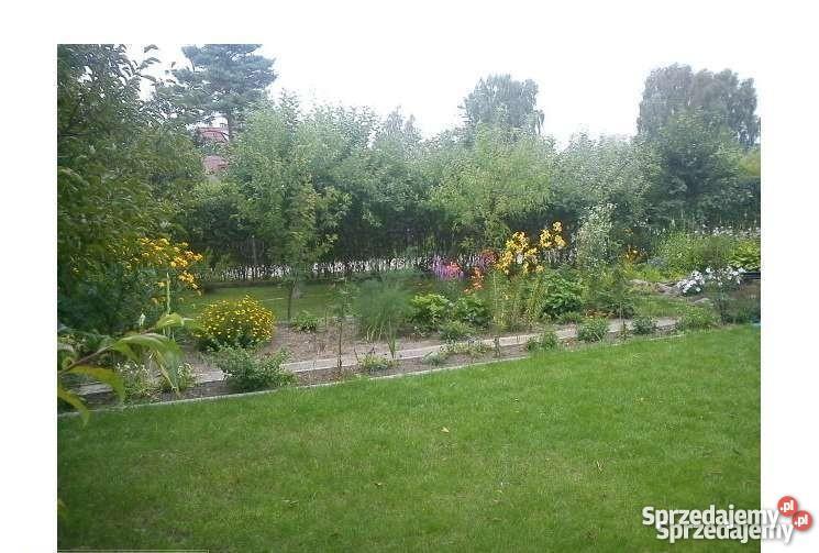 Działka ogrodowa Lubin
