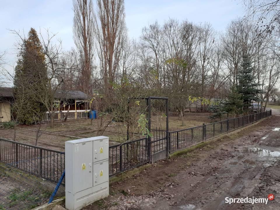 Sprzedam dzialke na Ogrodach dzialkowych Marlewo w Poznaniu