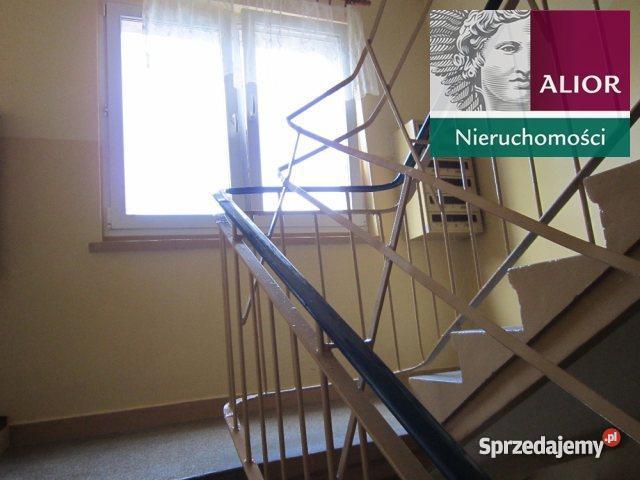 sprzedaży mieszkania 3940m2 1 pokój Poznań Liczba pokoi 1 Poznań