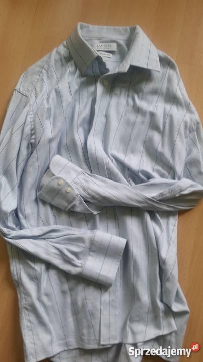 43, 182, XL, Lambert, koszula męska z kołnierzykiem,100%bawe  3gJoS