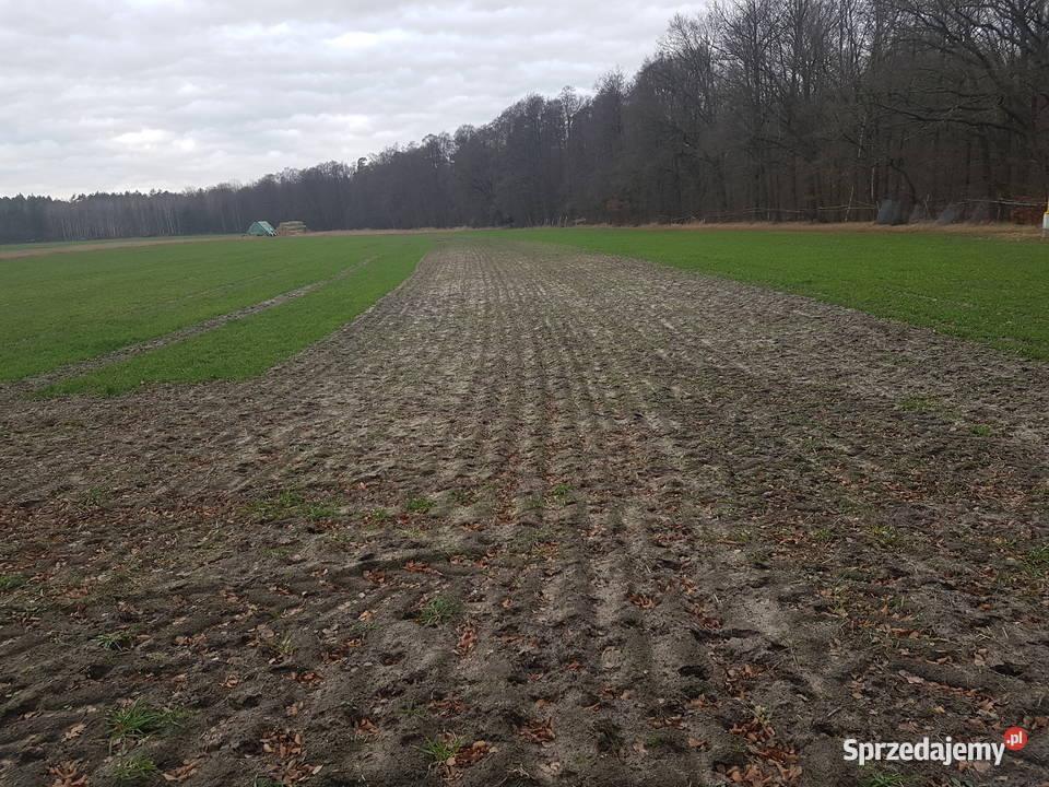 Nowa Bogacica Działka rolno-budowlana · 1000 m²
