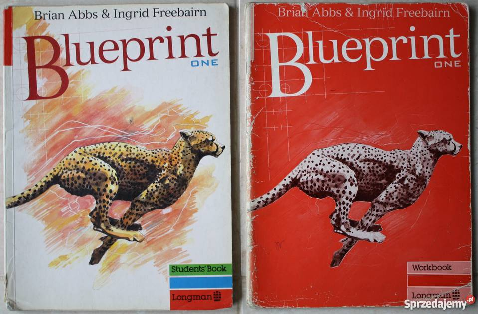 Kurs podstawowy jzyka angielskiego blueprint one straszyn kurs podstawowy jzyka angielskiego blueprint ksiki do nauki jzyka obcego straszyn malvernweather Gallery