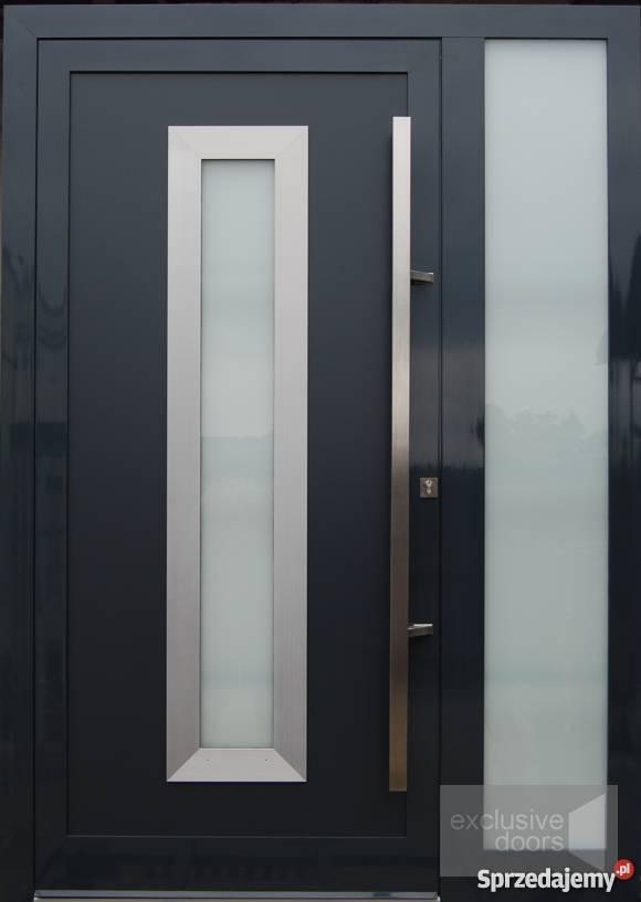 Wspaniały Nowoczesne drzwi wejściowe, zewnętrzne Piwniczna-Zdrój ZB94