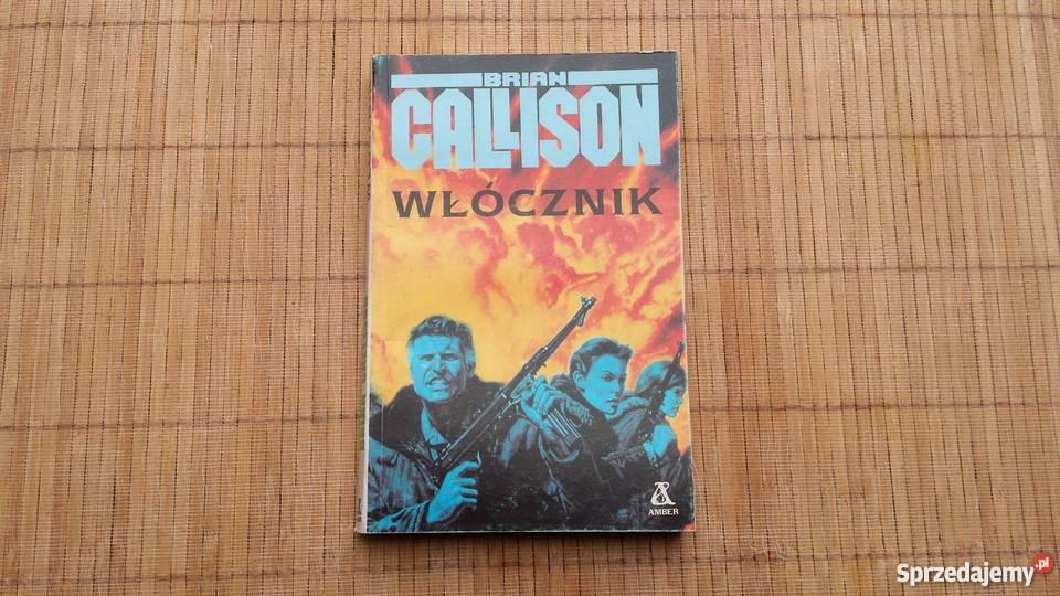 Książka Brian Callison Włócznik Książki i Podręczniki Warszawa
