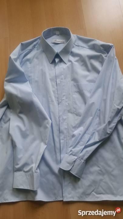 43, 176 182, L XL, koszula męska z kołnierzykiem, elegancka