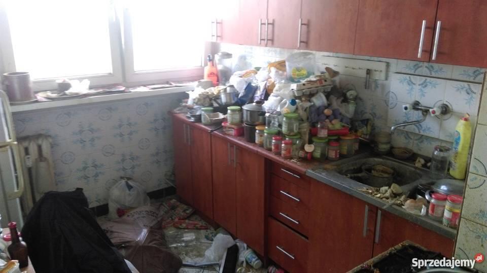 sprzątanie OGRODÓW mieszkan PIWNIC STRYCHY Wrocław