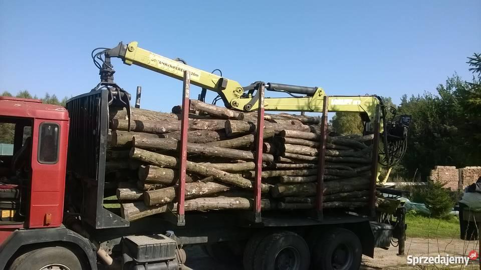 Masywnie transport drewna z lasu - Sprzedajemy.pl JQ76