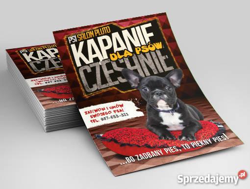 Projekt graficzny plakat ulotka lubelskie Lublin