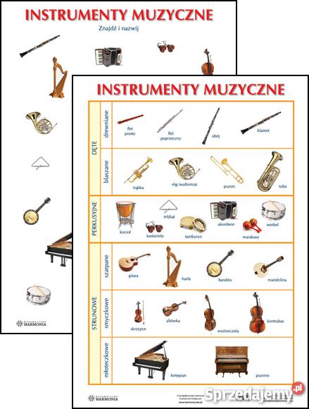 Młodzieńczy instrumenty muzyczne - Sprzedajemy.pl QX78