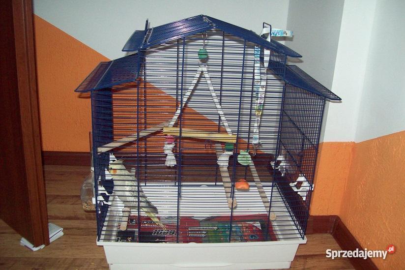 Papuga Nimfa klatka Pozostałe