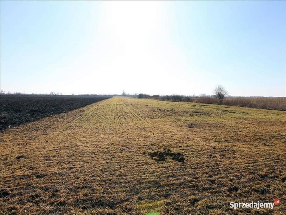 Nieruchomość gruntowa, rolna o pow. 5093 m2 Muchobór Wielki