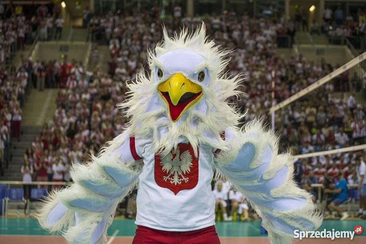 polska usa siatkówka bilety