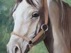 """Obraz olejny ręcznie malowany """" koń """" rama gratis! WYSŁYŁKA GRATIS"""