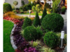 Projektowanie i aranżacje ogrodów