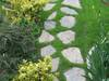 Kamień ścieżkowy - łupek szarogłazowy