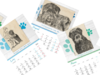Czarny terier rosyjski - kup kalendarz, pomóż psom - miniaturka