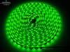 Taśma 60 LED SMD 3528 IP20 ZIELONA 12V DC HIT
