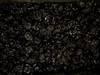 Śliwka suszona - Producent śliwki suszonej dymem (wędzonej)