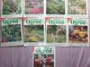 Mój piękny ogród gazeta czasopismo RÓŻNE