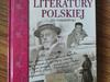 Dzieje literatury polskiej, Tomkowski TANIO NOWA
