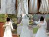 Suknia ślubna - Ecru - Rozmiar 40,42 - miniaturka