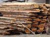 foszty drewno modrzew świerk brzoza olcha dąb - 2