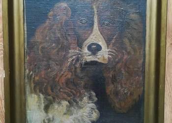 Obraz olejny W. HASIOR - Portret psa