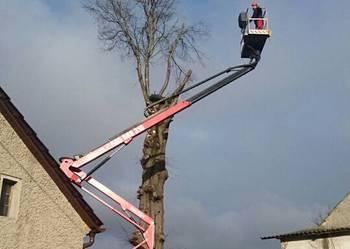 Wycinanie, wycinka, przycinanie, cięcie i pielęgnacja drzew.