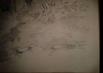 Szkic olowkowy XIX wiek