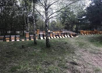 Odkłady Pszczele na rok 2018