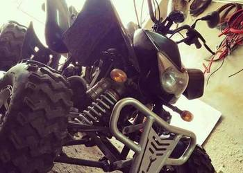 Quad eglmotor 250