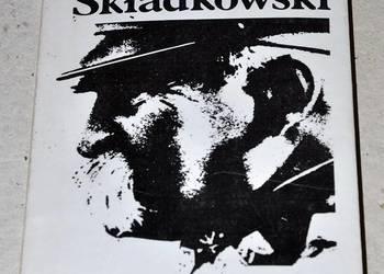 Strzępy melduków - Felicjan Sławoj Składkowski
