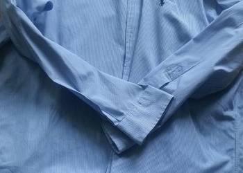 42-43, 176-182, L-XL, Ralph Lauren, koszula męska z kołnierz